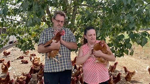 M. et Mme Picard avec leurs poulets Bio à Bagneux